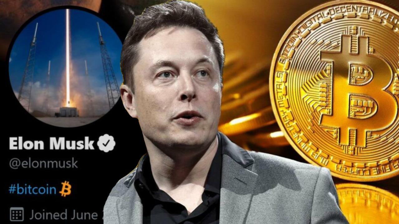 Elon Musk Kripto Paralar İle Uğraşıyor